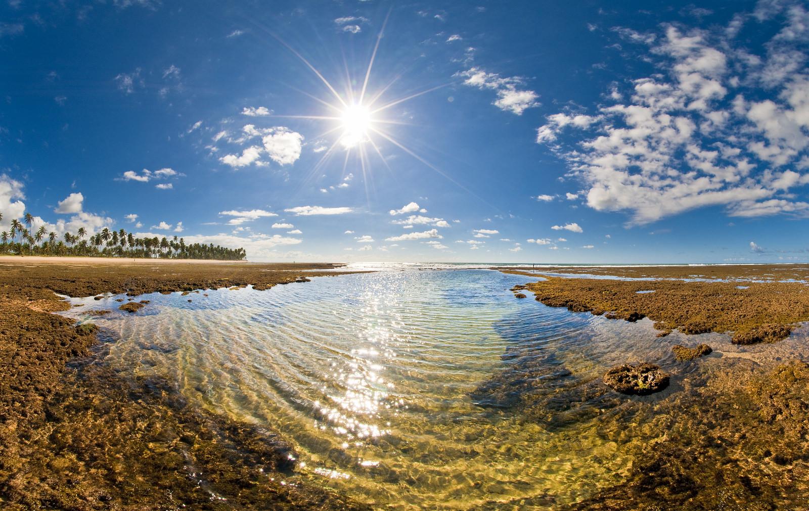 Praia Do Forte Bahia Transfer
